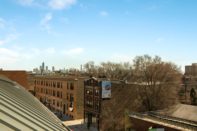 View from Tyler & Missy's Wicker Park Condo